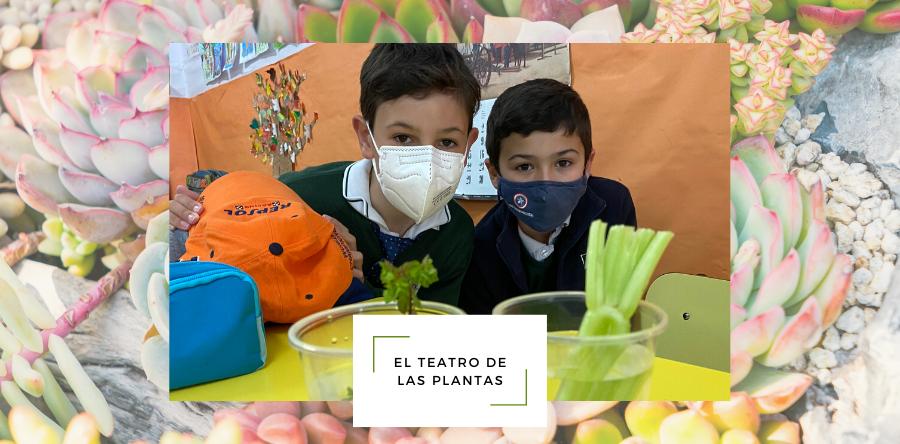 El Teatro de las Plantas - Fundación Colegio Bérriz