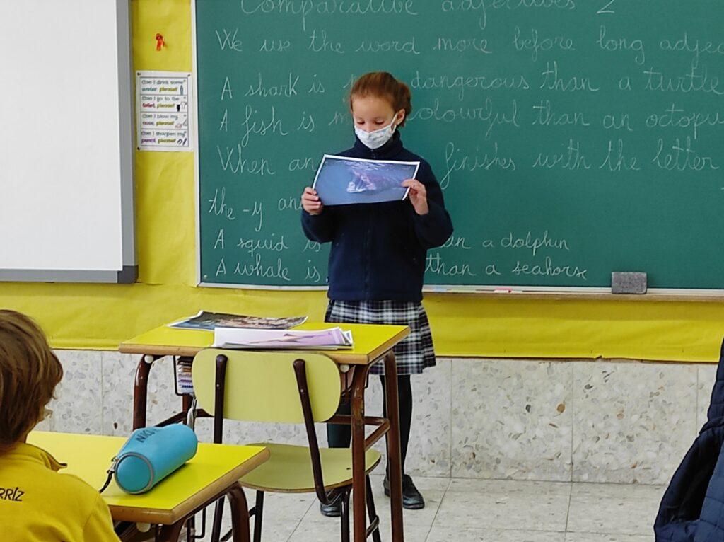 Sharks, 3º Primaria - Fundación Colegio Bérriz 2