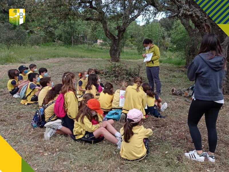 Salida al Alcornocal de Molino de la Hoz 2 - Fundación Colegio Bérriz