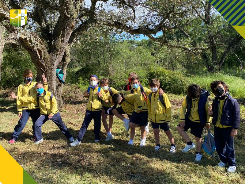 Salida al Bosque de Alcornoques de Molino de la Hoz 3 - Fundación Colegio Bérriz