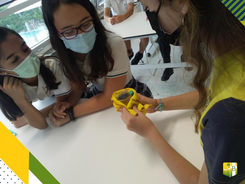 Taller Cambios Físicos y Químicos 3 - Fundación Colegio Bérriz