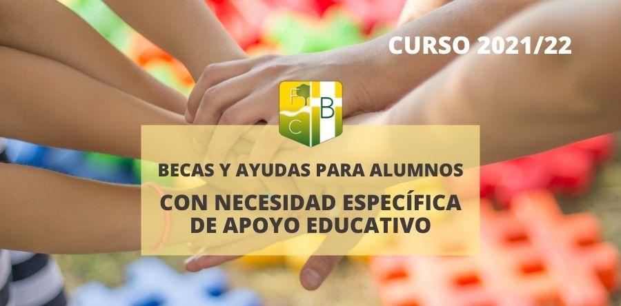 Becas alumnos necesidades específicas de apoyo educativo - Colegio Bérriz